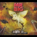 Mr. Big - What If '2011
