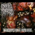 Infant Myiasis - The Decomposition Of A Raped Infant '2016