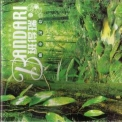 Bandari - The Best Green Music For Health '2001