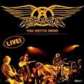Aerosmith - You Gotta Move '2004