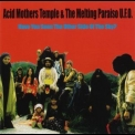 Acid Mothers Temple & The Melting Paraiso U.F.O. - Have You Seen The Other Side Of The Sky '2006