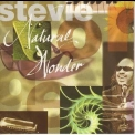 Stevie Wonder - Natural Wonder (2CD) '1996