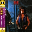 Mcauley Schenker Group - Perfect Timing '1987