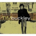 Tim Buckley - Morning Glory (Anthology) (cd 2) '2001