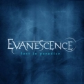 Evanescence - Lost In Paradise '2012