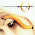 A Perfect Circle - Thirteenth Step '2003