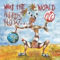 Public Image Ltd. - What The World Needs Now... '2015