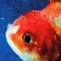 Vince Staples - Big Fish Theory '2017
