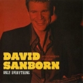 David Sanborn - Only Everything '2010