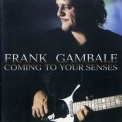Frank Gambale - Coming To Your Senses '2000