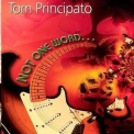 Tom Principato - Not One Word '2000