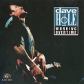 Dave Hole - Working Overtime '1993