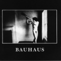 Bauhaus - In the Flat Field '1981