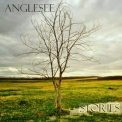 Anglesee - Stories '2018