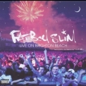 Fatboy Slim - Live On Brighton Beach '2002