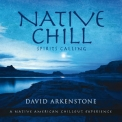 David Arkenstone - Native Chill '2014