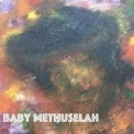 Mr. Smolin - Baby Methuselah '2019