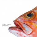 Clara Luzia - We Are Fish '2013