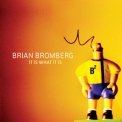 Brian Bromberg - It Is What It Is '2009