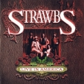 Strawbs, The - Live In America '2007
