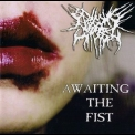 Begging For Incest - Awaiting The Fist '2008