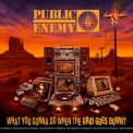 Public Enemy - What You Gonna Do When The Grid Goes Down? '2020