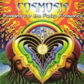 Cosmosis - Fumbling For The Funky Frequency '2009