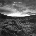 David Darling - Dark Wood '1995