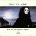 Dead Or Alive - Mad, Bad, And Dangerous To Know. '1986