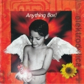 Anything Box - Elektrodelica (an Exhibition For A Time Capsule) '1999