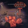Sun Descends - The Entropy Formula '2008