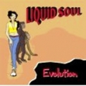 Liquid Soul - Evolution '2002