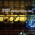 Ginormous - At Night, Under Artificial Light '2008