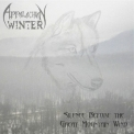 Appalachian Winter - Silence Before The Great Mountain Wind '2008