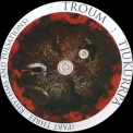 Troum - Tjukurrpa (part Three: Rhythms And Pulsations) '2003