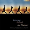 Terry Oldfield - Dancing Through The Chakras '2009