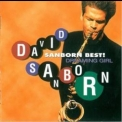 David Sanborn - Sanborn Best ! - Dreaming Girl '1996